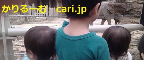 moblog_bd7c9d26.jpg