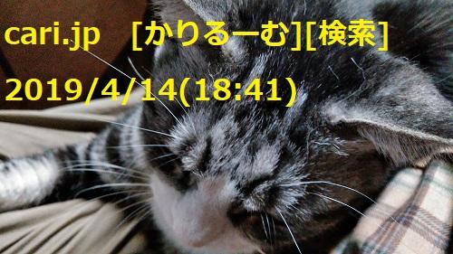 moblog_fb595ea7.jpg