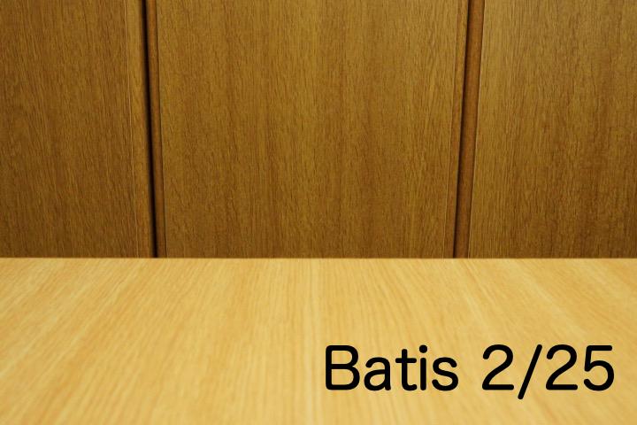 B_batis25.jpg