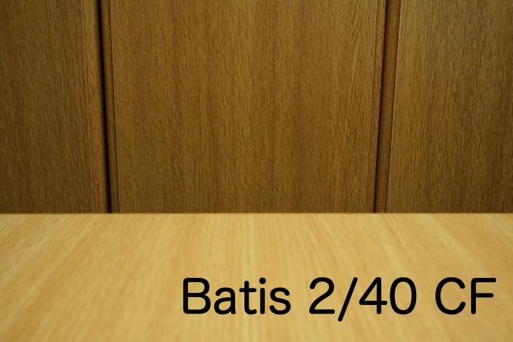 B_batis40.jpg