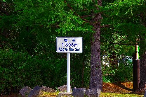 IMGP4382.jpg