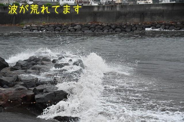 d-D75_0507.jpg