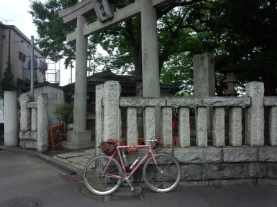 photo_derosa_yokohama-odawara_0705_1_2019_0705.jpg