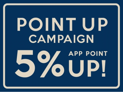 * POINT UP CAMPAIGN *