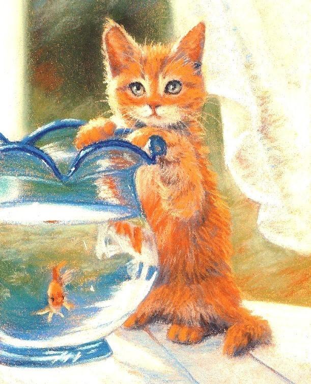 aworangetabby w goldfishtrmmd