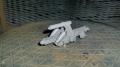 15cm_sFH18_L30(仮)砲架