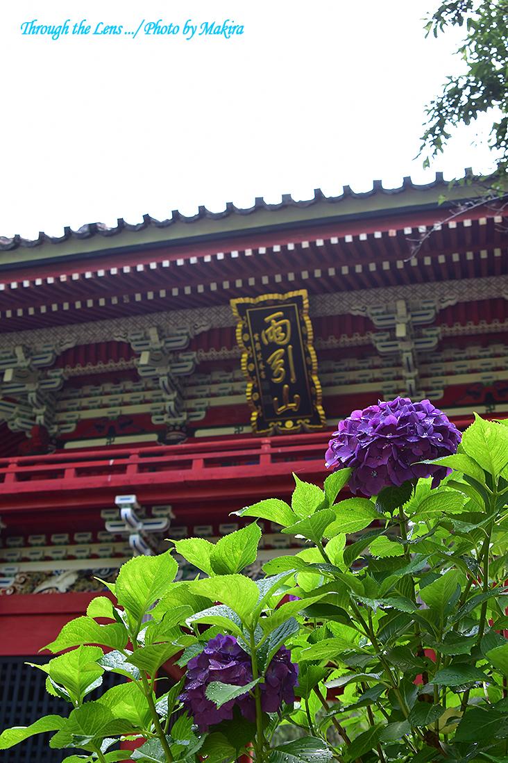 仁王門56D3