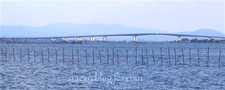 琵琶湖大橋 いいですね