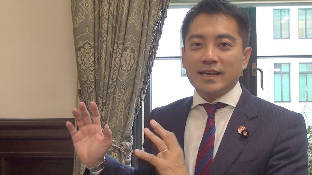 辰巳孝太郎議員のコメント
