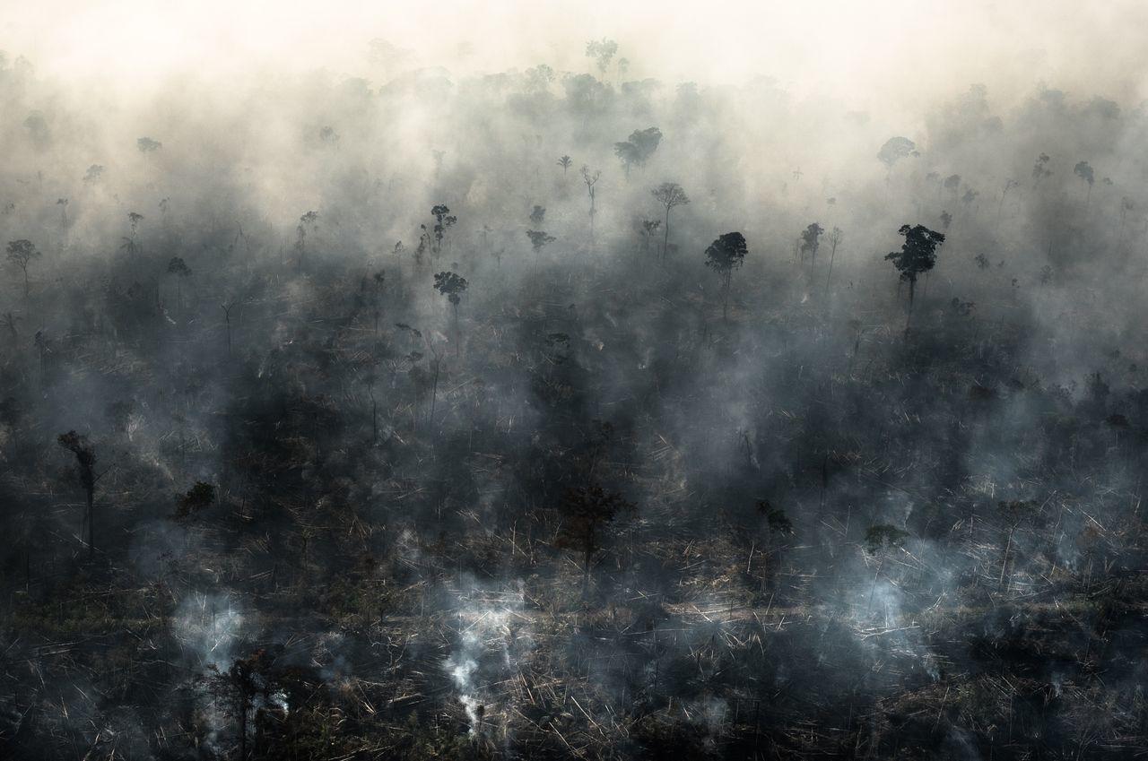 この8月だけでも2万6千件の山火事がブラジルで発生しました。