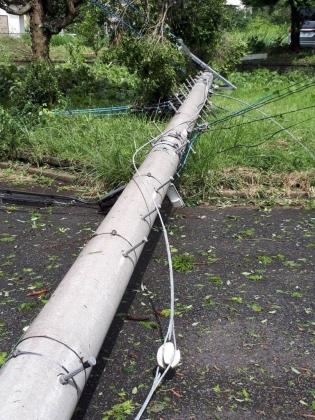 台風15号 電柱