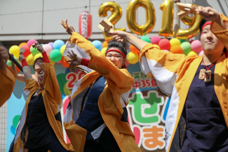 ibuki2019keyaki-9.jpg