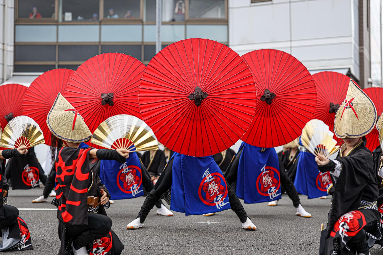 kabuto2019tokoro-2.jpg