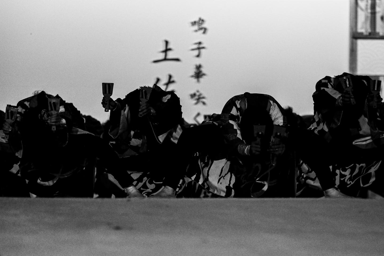 kanpachiyuwa2019kochiyosa-1.jpg
