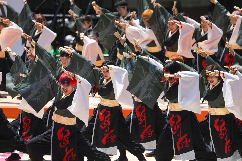 odorizamurai2019yosakoisf-2.jpg