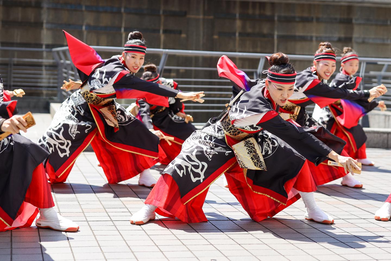 yakudo2019hamakoi-1.jpg