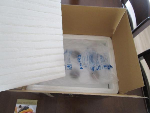 銀座千疋屋フルーツタルトアイス (3)
