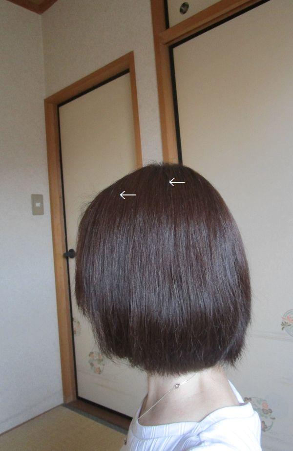 髪 マスカラタイプの白髪隠し(白髪染め)