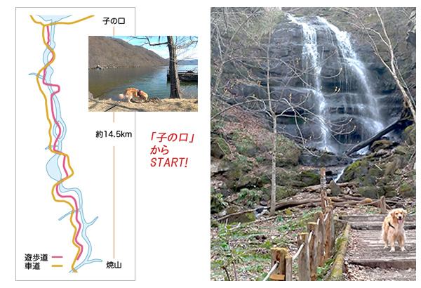 奥入瀬渓流図2