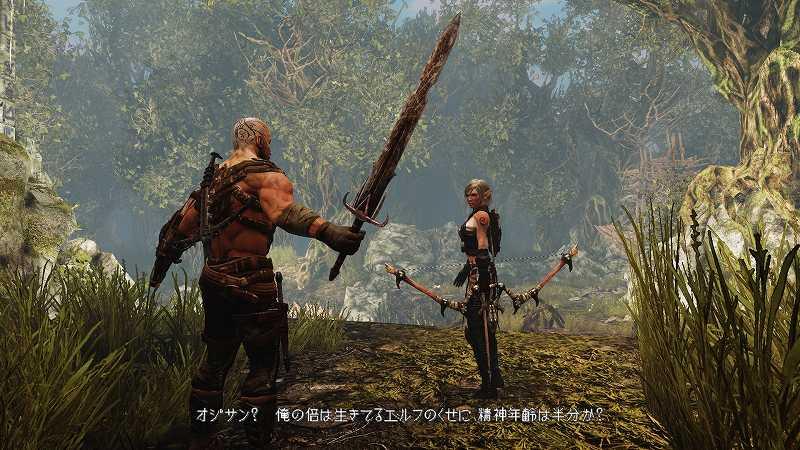 PC ゲーム Hunted: The Demon's Forge 日本語化メモ、日本語化後のスクリーンショット