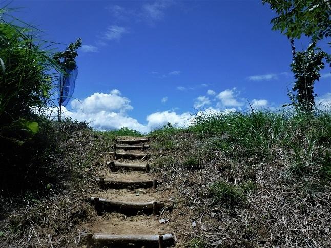 19.7.26 天覧山→多峰主山→龍崖山 (98)