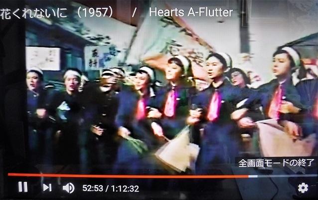 19.7.29 イオン・中華三昧・ポカリ棚 (15)