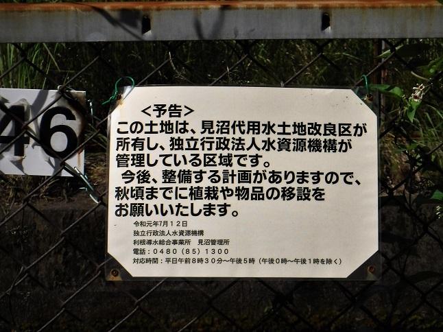 19.8.5 絵の教室モチーフ人形 (3)