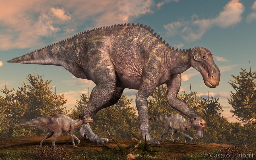 Maiasaura_20120602_3 マイアサウラ