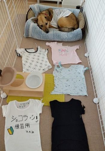 19_07_09_02.jpg