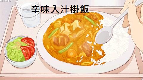 辛味入汁掛飯(カレー)