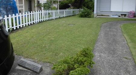 芝刈り後3