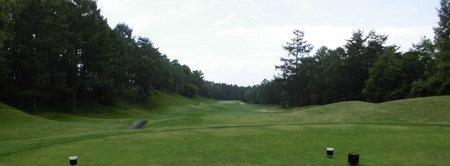 14フォレスト三井の森