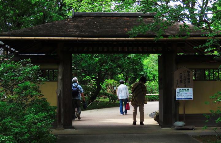 日本庭園-576