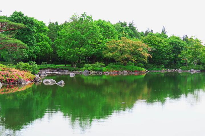 日本庭園-591