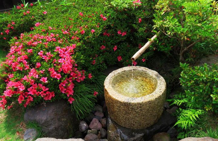 日本庭園-598