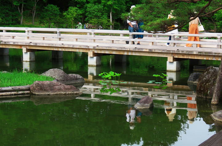 日本庭園-609