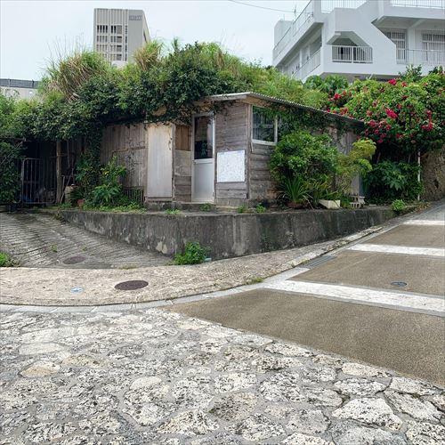 ゆうブログケロブログ沖縄2019 (25)