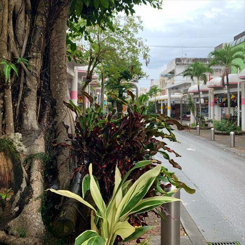 ゆうブログケロブログ沖縄2019 (78)