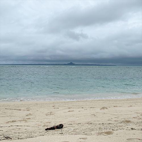 ゆうブログケロブログ沖縄2019 (110)