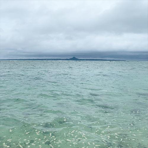 ゆうブログケロブログ沖縄2019 (113)