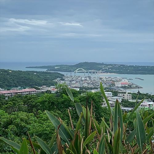ゆうブログケロブログ沖縄2019 (129)