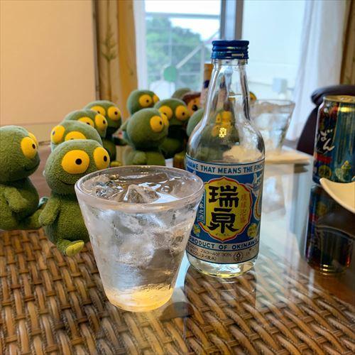 ゆうブログケロブログ沖縄2019 (131)