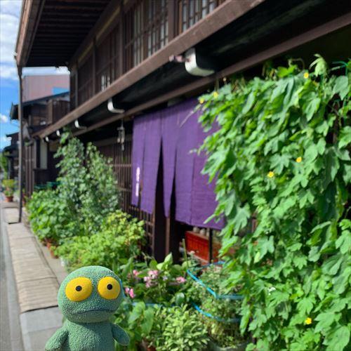 ゆうブログケロブログ飛騨高山2019夏 (13)