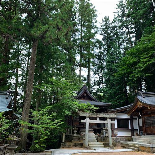 ゆうブログケロブログ飛騨高山2019夏 (66)