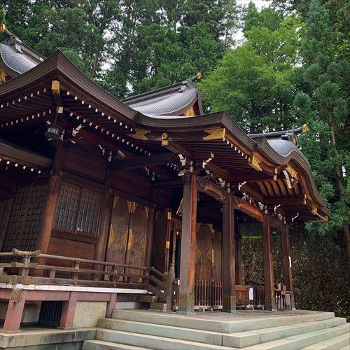 ゆうブログケロブログ飛騨高山2019夏 (67)