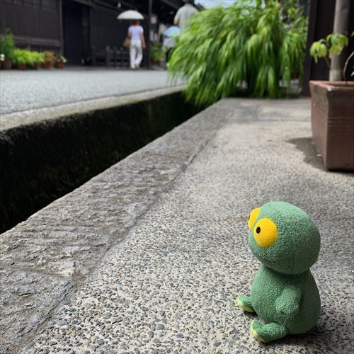 ゆうブログケロブログ飛騨高山2019夏 (70)