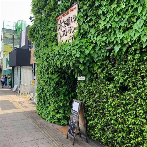ゆうブログケロブログ福生2019 (16)