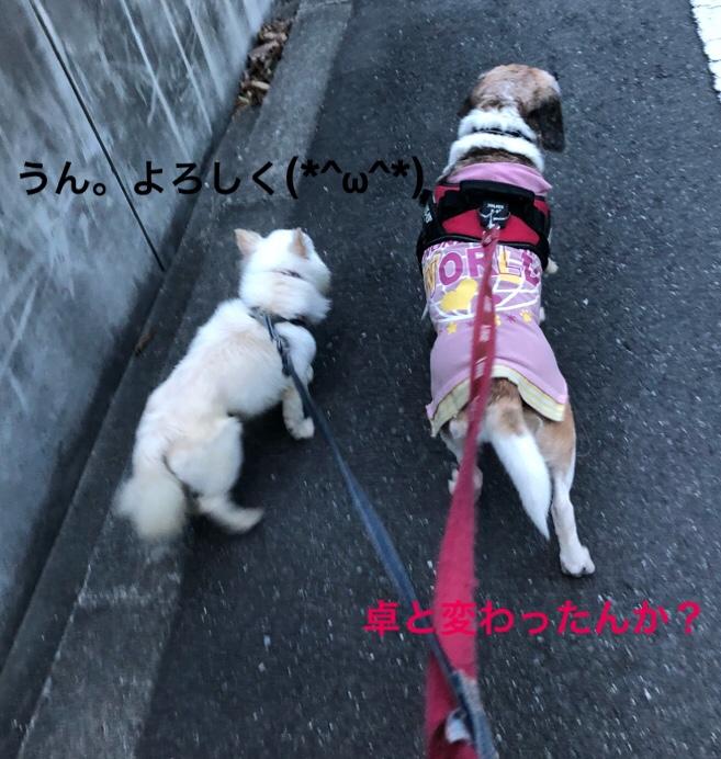fc2blog_2019082201582225e.jpg