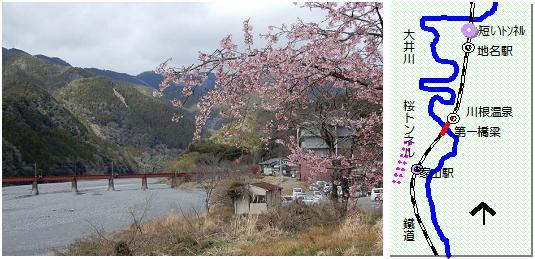 大井川第一橋梁マップ