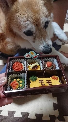 祝16歳ケーキ